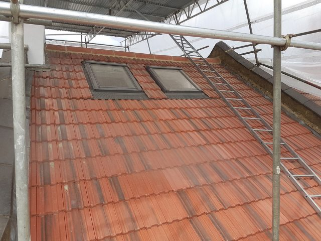 Loft extension roof with velux windows.